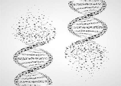 Unidad de Genética