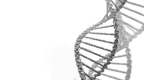 DGP: Diagnóstico Genético Preimplantacional