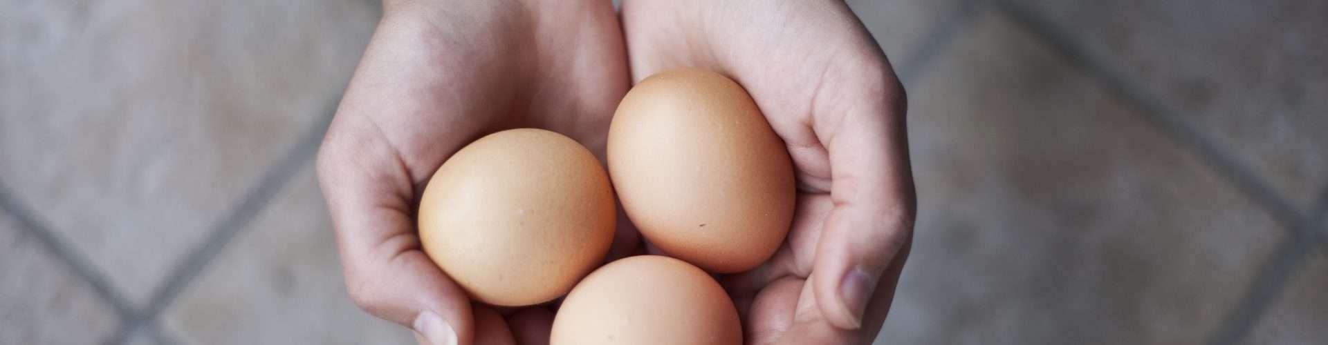 La donación de óvulos es un gesto de solidaridad, un regalo que una mujer hace a otras para poder quedar embarazadas