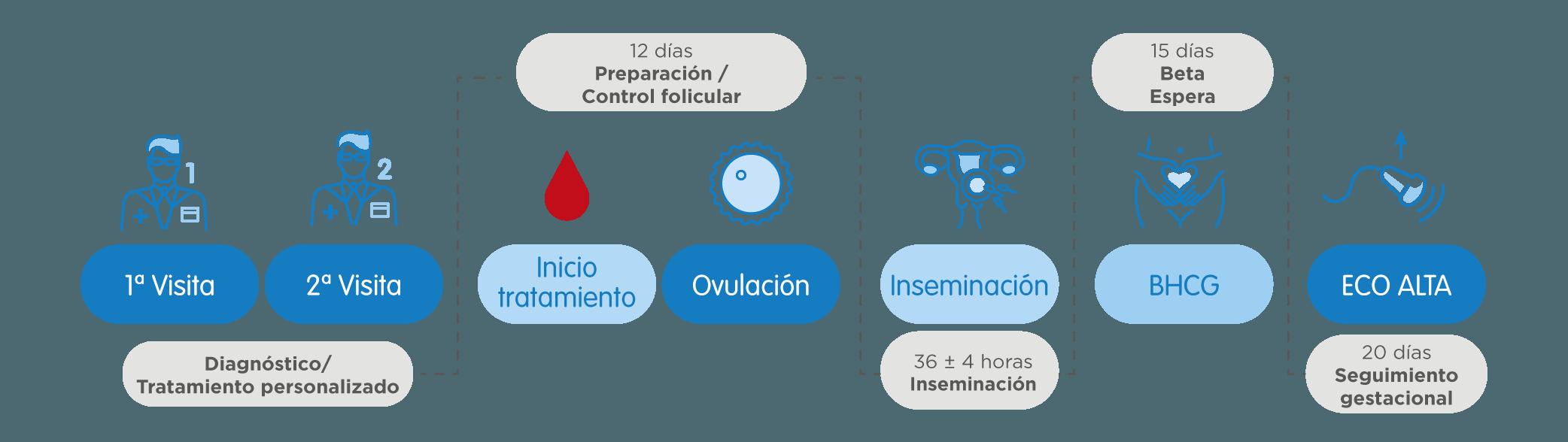 Infografía Inseminación Artificial (IA)