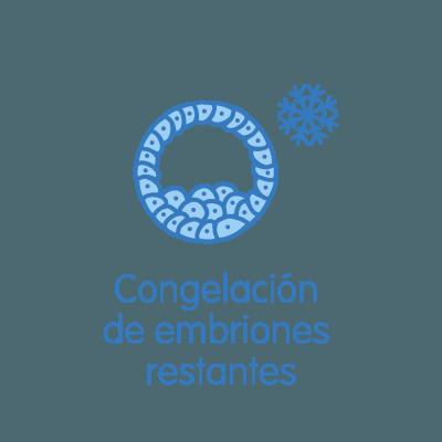 Vitrificación de embriones restantes