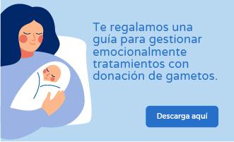 Guía tratamiento con donación de óvulos